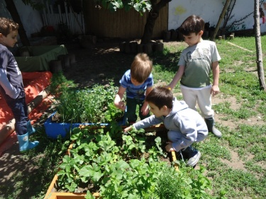 deca u bašti